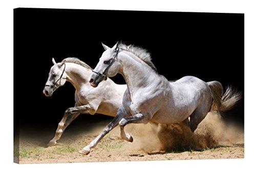 fototapete nachleuchtend Wandbilder Startoshop, nachleuchtende Leinwandbilder oder Selbstklebende Fototapete, Pferde in Einer Staubwolke Wanddeko, 40 cm x 60 cm