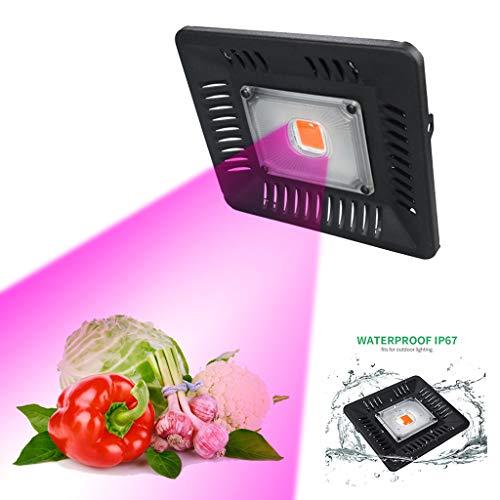 ZWW Geführte Pflanzenwachstumslampe, Füllen Das Volle Spektrum des Lichtes, Das COB-Hochleistungs-Wasserdichtes 300W-Flutlicht Pflanzt,50W - 50w Hps Lampe