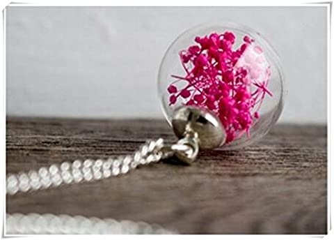 véritable jewelry. Fleur Rose Couleur Pendentif. Véritable Fleur Collier. Collier Argent. Globe en verre Pendentif. Gypsophila Rouge