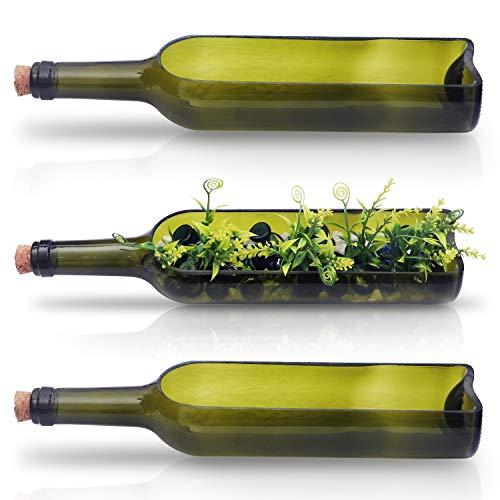 Vaso Vetro Bottiglia di Vino Vasi Moderni da Interno da 225 x 58 Vasi per Piante Grasse Cactus Fiori Terrario Vasi Vetro per Centrotavola Matrimoni