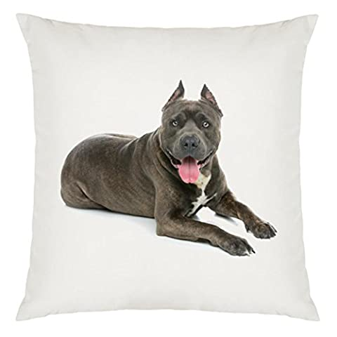American Staffordshire Terrier Image Design Large Cushion Cover with Filling
