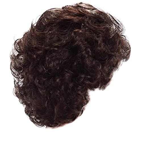 Kurze Haarperücke,Rifuli®Schwarze Frauen braun natürliche sexy kurze synthetische Perücke Mode Abschied Perücken Rose Netlockig Haar Wig