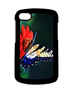 Mobifry Back case cover for BlackBerry Q10 Mobile (Printed design)
