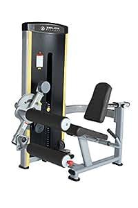Zelex Seated Leg Extension Leg Curl Equipment
