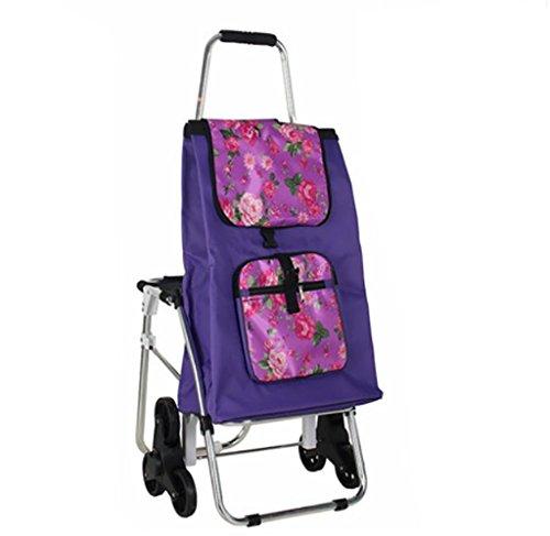 GAYY Trolley Dolly mit Sitz, Einkaufen Lebensmittelgeschäft Faltbarer Wagen Tailgate Leichte Wäsche, Einkaufen, Lebensmittelgeschäft,C Rollator Mit Tablett Tisch