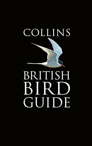 collins-british-bird-guide-collins-pocket-guide