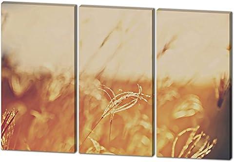 Auf dem Feld, Gemälde Effekt, schönes und hochwertiges Leinwandbild zum Aufhängen in XXL - 3 Teiler mit 120cm x 80cm, echter Holzrahmen, effektiver Pigmentdruck, modernes Design für Ihr Büro oder (Feld 48 Tor)