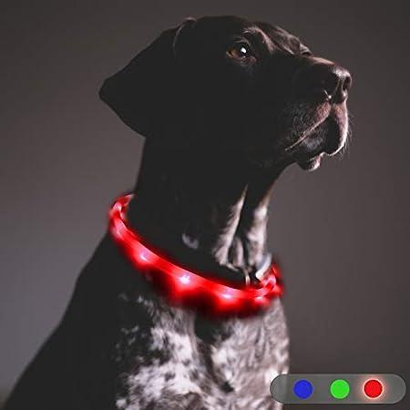 Toozey LED Leuchthalsband Hund – Dauerlicht für 20 Stunden – USB wiederaufladbar Längenverstellbar Nacht-Sicherheit…