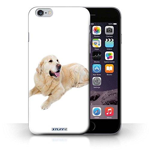 Kobalt® Imprimé Etui / Coque pour iPhone 6+/Plus 5.5 / Dalmatien conception / Série Chiens Labrador