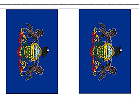 Pennsylvania US State Polyester Flag Bunting 3m (10') Bunting With