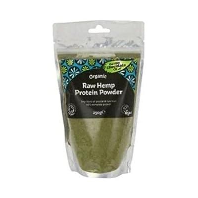 The Raw Chocolate Company Organic, Vegan Hemp Protein Powder 230grams x 2