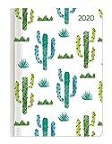 Minitimer Style Kaktus 2020 - Taschenplaner - Taschenkalender A6 - Weekly - 192 Seiten - Terminplaner - Notizbuch