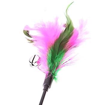 Domybest Chat Chaton jouet pour animaux coloré artificielle plumes courte Tige Interactive bâton Bell jouet Lot de 5Couleur aléatoire
