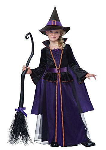 Hocus Pocus Child Costume, Small by California Costumes (Hocus Pocus Kostüm)