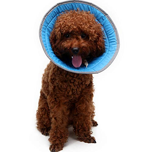 e Elisabethanischer Wunde Kragen Schutzkragen für Katzen Uns Hunde Tier Kragen Halskrause für Hund Katze,Schutzkragen für Dein Haustier,Blue,L ()