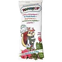 Toothpop Zahnpflege Lolli 2 in 1, 10er Pack(10 x 1 Stück)