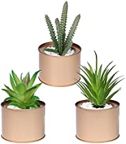 Home Ornament, 3 Pack Potted Fake Succulents Pot DIY Mini Artificial Simulation Plants Sets for Home Kitchen G
