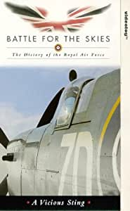 History of the Raf-Vicious Sting [VHS]