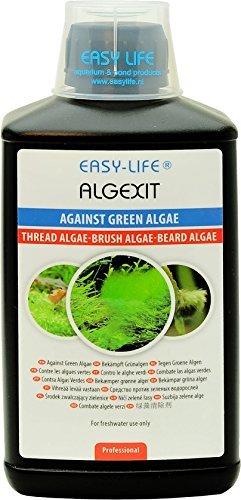 Easy Life AlgExit