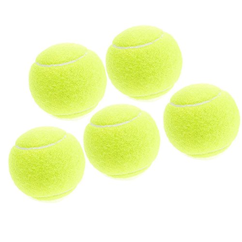 Doitsa 5 Stück Tennisbälle Professionelle Training Tennisbälle, Tennis practice ball, ideal für Tennis-Unterricht, Praxis,Hund Spielzeug Ball Outdoor Spaß Strand Freizeit Dog Training Gelb
