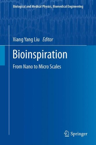 Bioinspiration: From Nano to Micro Scales (Biological and Medical Physics, Biomedical Engineering)
