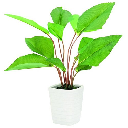 euro-palms-82509300-pianta-ornamentale-a-foglia-larga-45-cm-verde-grun