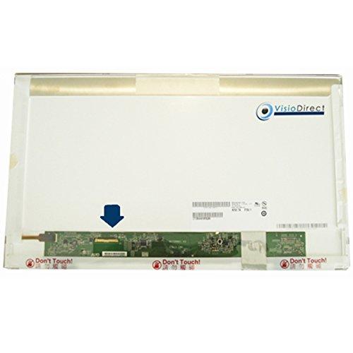 Bildschirm LCD Display 17.3