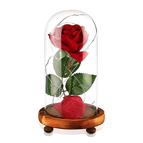H.Yue USB Powered Artificial Silk Rose Flowers in Glass Dome with LED Light String Fallen Petals On Wooden Base Home Decor Holiday Party Wedding Anniversary Birthday Gift Usb-11 Low Light