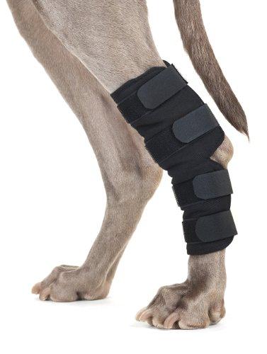 Back on Track Therapeutische Hund hinten Bein/Hock Bandage (Paar) groß 8.75-inch Länge, 6,75bis 7.8-inches Breite Oben, 5.1zu 6.25-inches Breite unten mit 4verstellbaren Klettverschluss (Unten Mantel Lange)