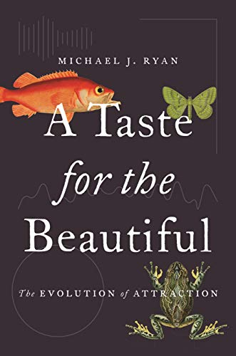 A Taste for the Beautiful: The Evolution of Attraction por Michael Ryan