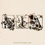 Songtexte von Sia - Colour the Small One