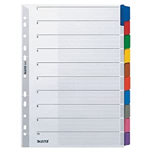 Leitz – 43210000 Divider File Dividers (Tab Blank Index Card, Colour, Portrait, A4, 160 g/m²)