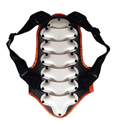 TZTED Rückenprotektor zum Umschnallen effektiver Schutz der Wirbelsäule Protektorplatten Kinder Ski & Snowboard Der Rückenprotektor,White,L