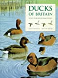 Ducks of Britain and the Northern Hemisphere