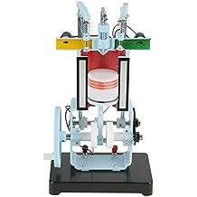 Akozon Modelo del Motor Diesel Combustión Interna de 4 Tiempos Instrumento de Enseñanza del Experimento de