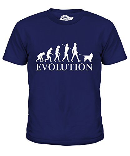 Candymix Springer Spaniel Evolution Of Man Unisex Kids T Shirt Boys/Girls/Toddler/Children T-Shirt