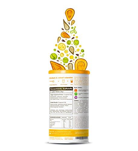 Vegan Protein (Vanille) - Reis-, Hanf-, Soja-, Erbsen-, Chia-, Sonnenblumen- und Kürbiskernprotein + Kokosmilch, Superfoods und Verdauungsenzymen - 600 Gramm Pulver mit natürlichem Vanillegeschmack - 2