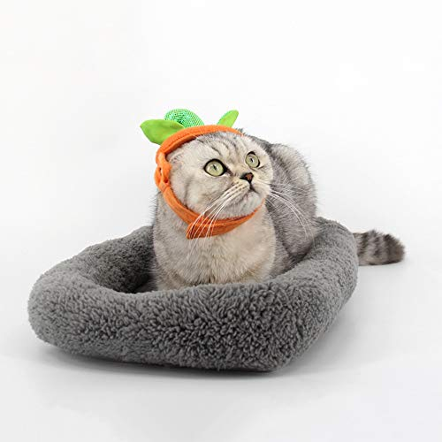 Wankd Weihnachts Kostüm Haustier Katzen Hündchen Kürbis Kappe Haustier - Benutzerdefinierte Pailletten Kostüm