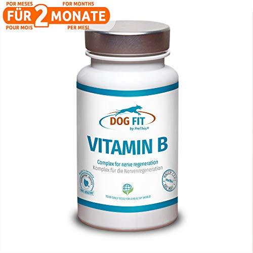 DOG FIT by PreThis® Vitamin B Komplex für Hunde | Für Das Nervensystem, bei Spondylose, Lähmungen, Koordinationsstörungen, Inkontinenz & Sehschwäche | ISO Zertifiziert! -