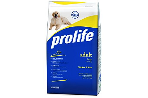 PROLIFE-Adult-Large-Pollo-e-Riso-15-kilogramm