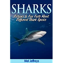 Sharks: Pictures and Fun Facts About Different Shark Species (English Edition)