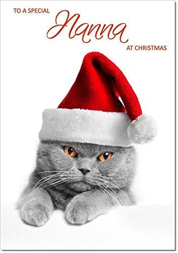 nanna con cappello da Babbo Natale di gatto–Taglia media