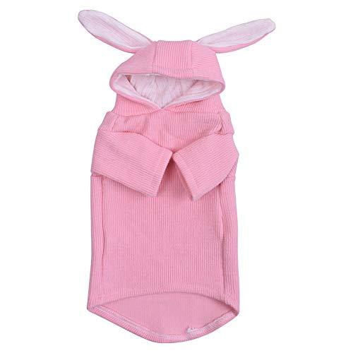 GaoHaiQing Pet Kleidung Katze Kaninchen Verwandelte Sich