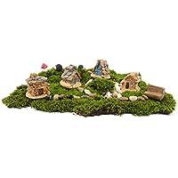 mossfairy 11pcs Jardín de hadas Mundo Antiguo DIY Kit con piedra de casa erizo seta