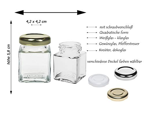 Gewürzgläser Set mit schraubverschluss | 10 teilig | Silber | Füllmenge 50 ml | Cub Eckig Hochwertiges Glas | Glasdose Glasgefäß ideal für Salz Pfeffer Sonnenblumenkerne kürbiskerne Kandis Bonbons