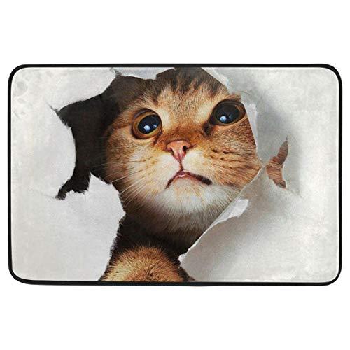 Wamika Fußmatte mit Lustigem Katzenmotiv, dekorativ, Rutschfest, waschbar, 3D-Design, süße Katze, für drinnen und draußen, 60 x 40 cm