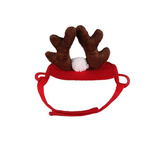 Mummumi Hund Urlaub und Weihnachten Hat, Puppy Hund Santa Hat Kostüm Weihnachten Collection Pet Zubehör für Katze Kaninchen Meerschweinchen Hamster, Klein, Rot, F (Hut Santa Big)