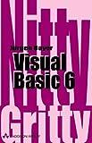 Visual Basic 6 (Sonstige Bücher AW)