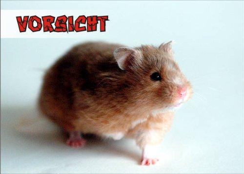 INDIGOS UG - Türschild FunSchild - SE834 DIN A4 ACHTUNG Hamster - für Käfig, Zwinger, Haustier, Tür, Tier, Aquarium - aus hochwertigem Alu-Dibond beschriftet sehr stabil (Geschlossen Hamster Käfige)