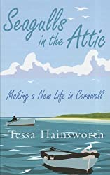 Seagulls In The Attic by Tessa Hainsworth (2011-06-01)